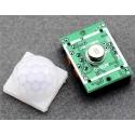 Mini Sensor Pir temporizado