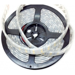 Tiras flexible de 240 Led 3528 Tube IP68 12v.