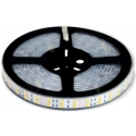 Tiras flexibles de 120 Led 5050 con protector