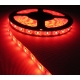 Tira flexibles IP65 60 Led/metro Led 5630 Rojo