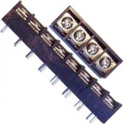 Bornas paso 10mm doble pin 20A