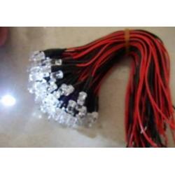 Led cableado Super brillo 5mm 12v.