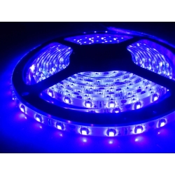 Tira flexibles UV IP20 60 Led/metro Led 3528