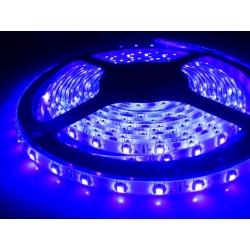 Tiras flexibles IP20 60 Led 3528 Ultravioleta