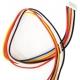 Cables JST de 6 Pin