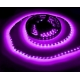 Tira flexibles No WP 60 Led Led 3528 Violeta