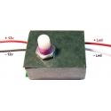 Regulador Electrónico para Led PWM 12v 2A