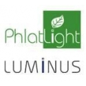 Led Luminus